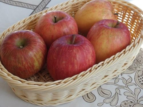有機栽培リンゴ2.jpg